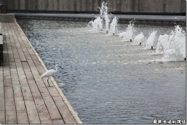 台南-運河博物館。台南是金城里活動中心前的親水步道。