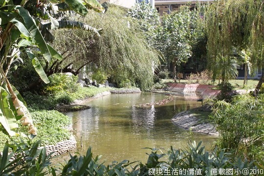 [台南安平]億載國小。如詩如畫的生態池。