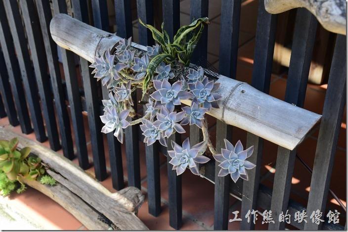 高雄內湖-拾閒堂04