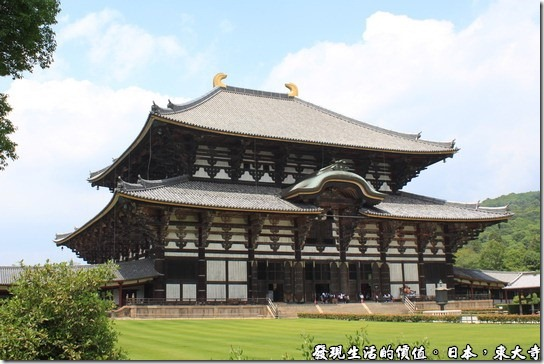 參訪有如日本巨大武士頭盔的奈良【東大寺】