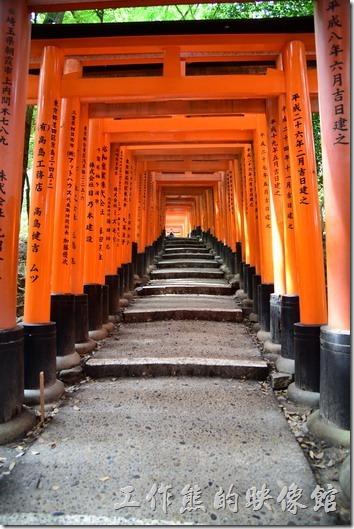 日本-伏見稻荷神社千鳥居