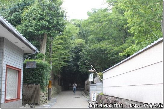 日本-野宮神社,野宮神社的必經之道,這裡從原本明亮的地方走進這兩旁種滿蔽天竹林步道,讓人感覺真的很不舒服,而且竹林的盡頭又是個墳墓區,總覺得怪怪的。