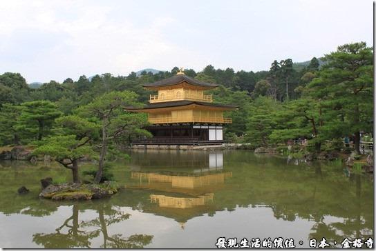 日本-金格寺,從這個角度拍攝金閣寺可以取得最佳的景點,金碧輝煌的金閣寺,映照著湖面,徐徐涼風吹來,陣陣連猗,那屋頂的鳳凰彷彿翩翩起舞。