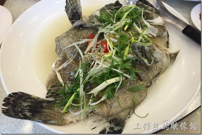 台北瑞芳-東北角鼻頭阿珠老店活海鮮。清蒸鮮魚,忘記叫什麼魚了,聽說特別挑的,肉質不錯。