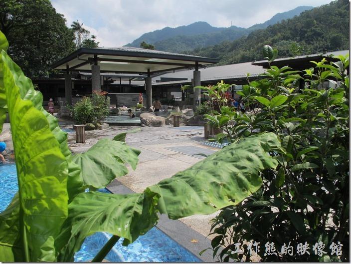 大板根森林溫泉渡假村既然是渡假村,當然有游泳池、SPA池,以及溫泉囉!