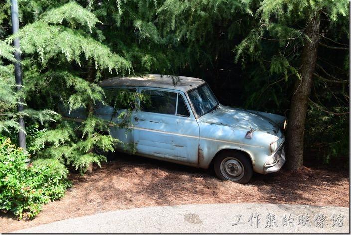 日本大阪-環球影城。通過魔法巨石陣之後會看到森林旁邊停著一輛榮恩偷偷開出其老爸的車子。