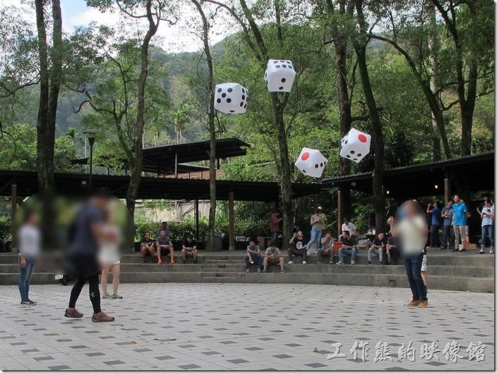 大板根森林溫泉渡假村。丟骰子遊戲,分組比大小。