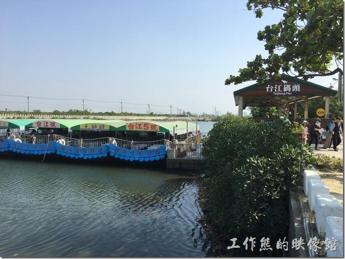 這邊是台江航線的碼頭,乘船遊台江,會繞行台江內海,沿途可以欣賞到紅樹林、候鳥、蚵棚、鹽水溪、嘉南大圳、安平樹屋…等。不過這台江航線的大部分行程都只能遠望台江沿岸,聽解說員說明。