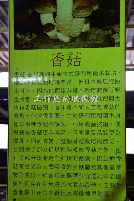 台中新社菇菇部屋。香菇介紹。