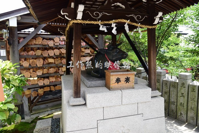 日本北野-異人館。北野天滿神社。聽說摸神牛可以長智慧,這場景怎麼跟台灣祭孔後拔牛毛的習俗差不多啊!不過也是要奉獻才能摸~