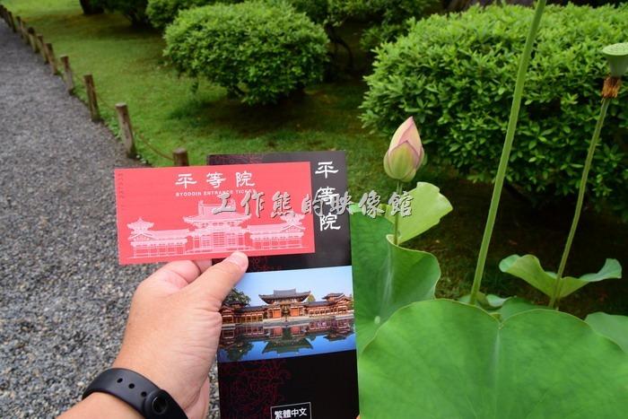 拿到平等院參觀的門票及說明書,就可以開始參觀的行程了。