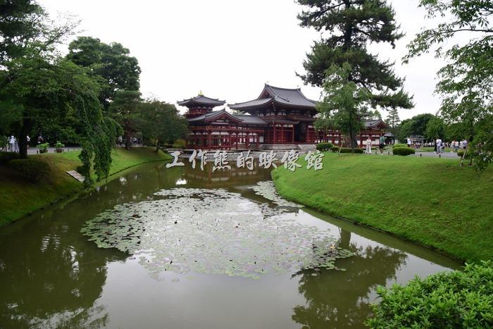 日本宇治-平等院14