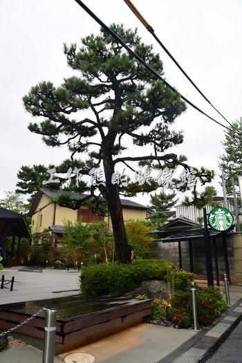 日本宇治-平等院20