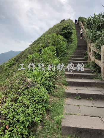 鼻頭角稜谷步道。從班哨所再往前走一小段路就會到達整段「鼻頭角稜谷步道」的轉折點了。
