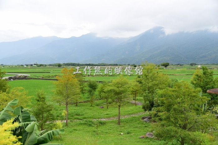 從台東池上【21 LIFE HOUSE(好禾X舍.HowHer)】餐廳上方二樓陽台可以欣賞台東池上的大片稻田與遠處的山巒。