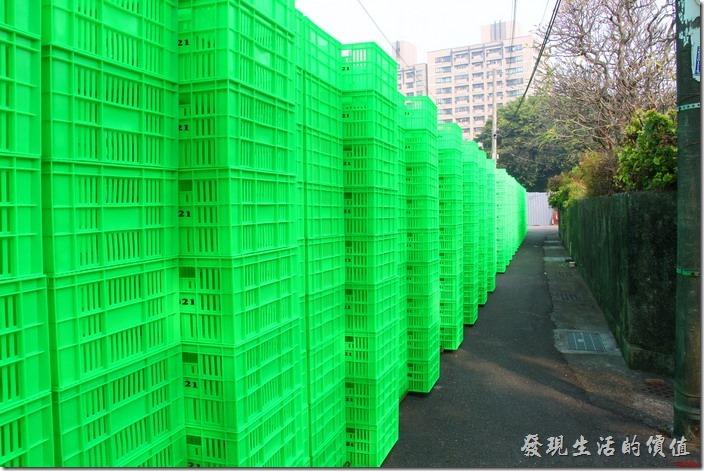 這是「321巷藝術聚落」巷底的綠色塑膠籃所搭建而成的大型裝置「林」作品,剛好與前面的「森」作品相呼應。(作品已拆除)