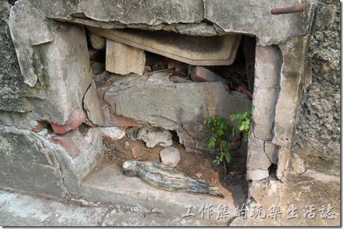台南-321巷藝術聚落。而落下的生命無法並肩而行,仍會漸漸的被土壤、落葉溫柔的包覆深埋。