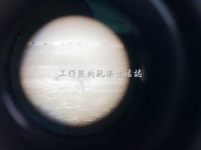 台南七股-黑面琵鷺野生動物保護區10