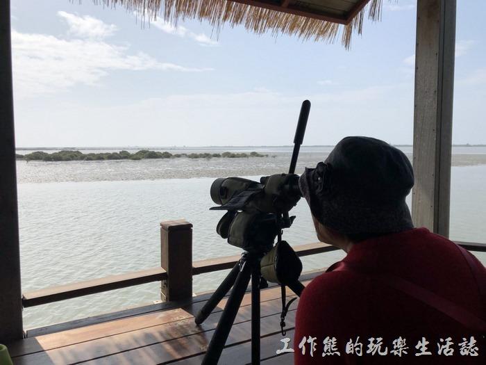 台南七股-黑面琵鷺野生動物保護區12