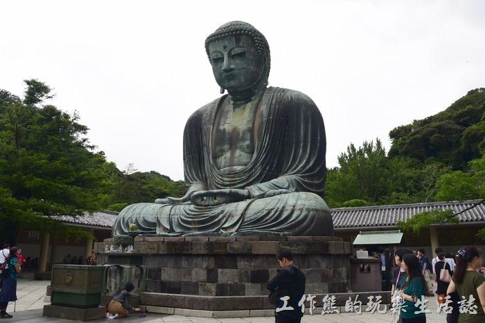 《日本旅遊》高德院大佛(鎌倉大佛),這大佛像原來是中空的啊!