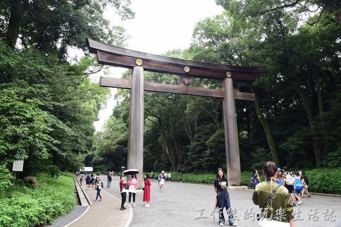 明治神宮的大鳥居,位於神宮前南參道及北參道交會處,是日本最大的木製鳥居。鳥居高有12公尺,兩柱間距9.1公尺,圓柱徑1.2公尺,屬於「明神鳥居」的型式。