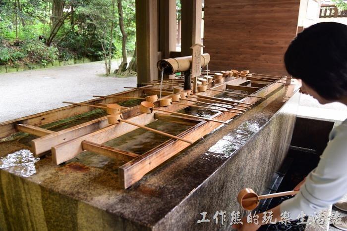 日本-明治神宮13