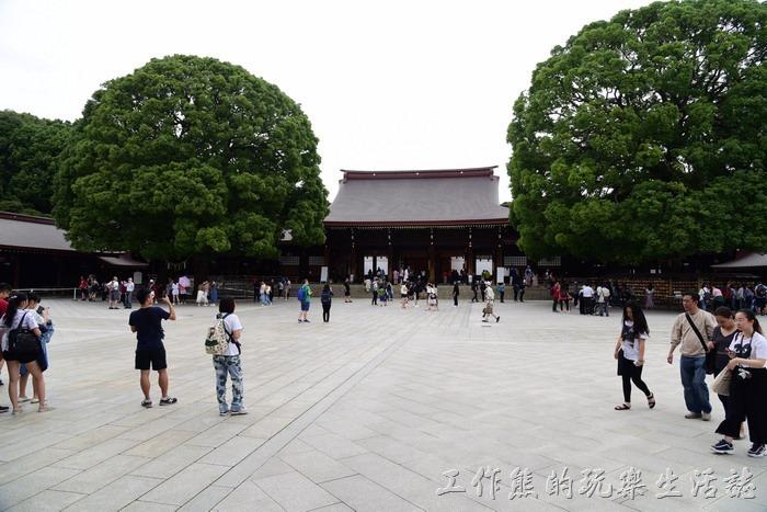 日本-明治神宮15