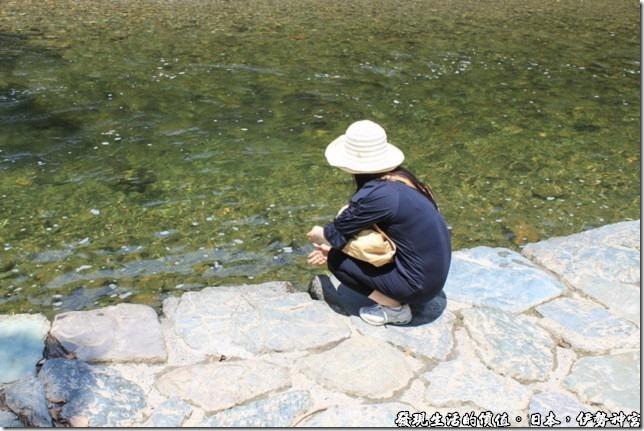 日本伊勢神宮,很多的日本民眾都會在這條五十鈴川上舀一點溪水洗手,我也去嘗試了一下,真的是透心涼啊!