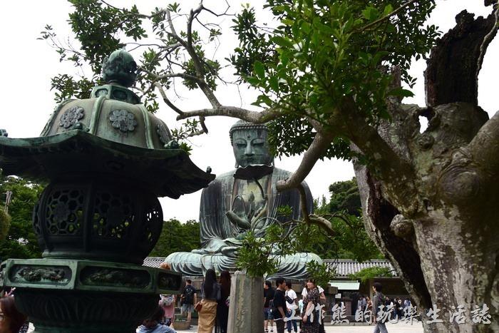 「鎌倉大佛」的佛像是青銅製品,法相莊嚴肅穆!