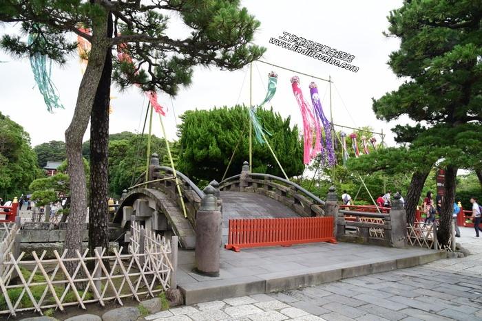 鎌倉鶴岡八幡宮。這座橋好像鵲橋呢!後來查了一下,這座橋叫做「太鼓橋」!
